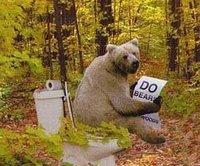 bear-shit-in-woods