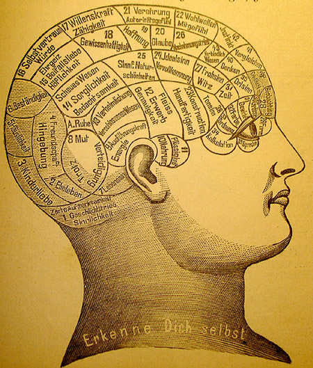 phrenology1