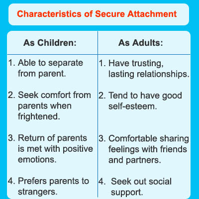 Attachment theory in romantic relationships