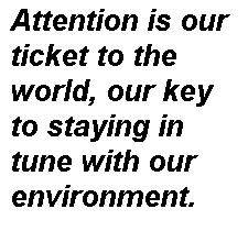 attention-quote-3